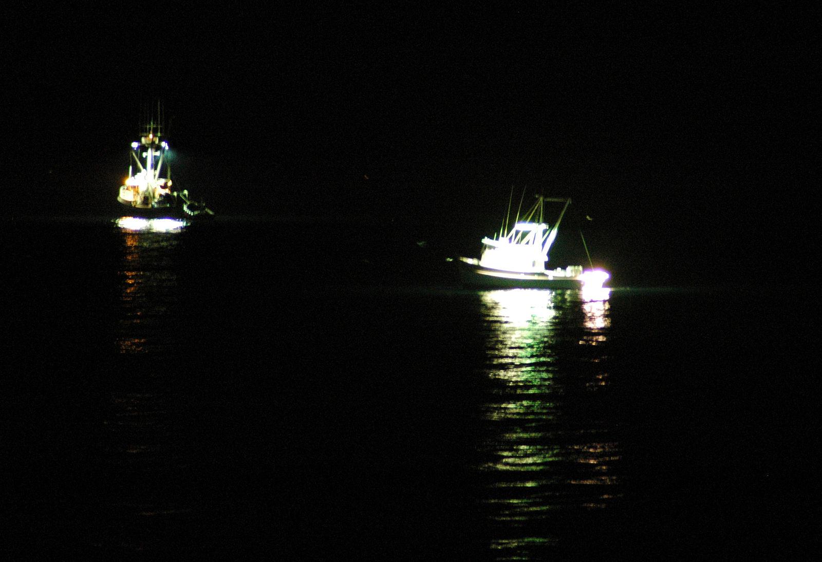 1600px-Squid_boats.jpg