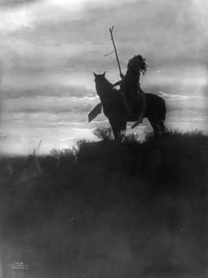1907 horse.jpg
