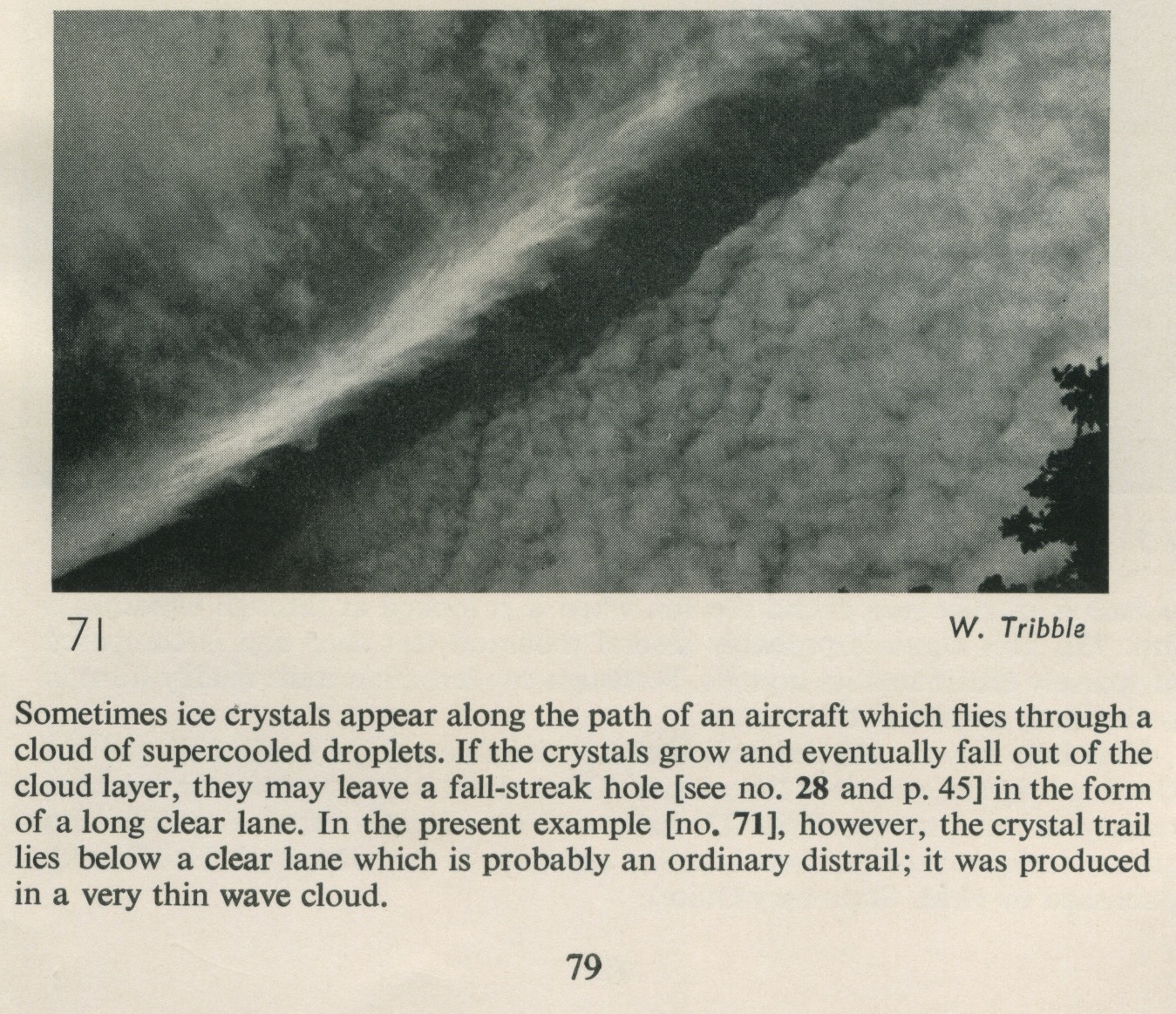 1957 cloud study page 79.