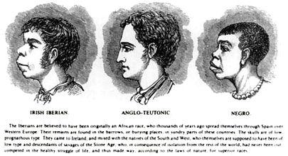405px-Scientific_racism_irish.jpg