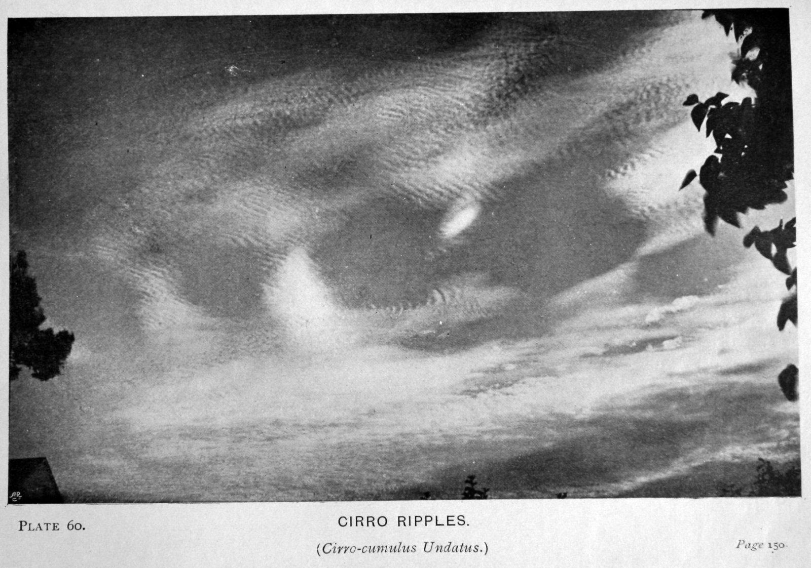 60 Cirro Ripples (Cirro-cumulus Undatus).JPG