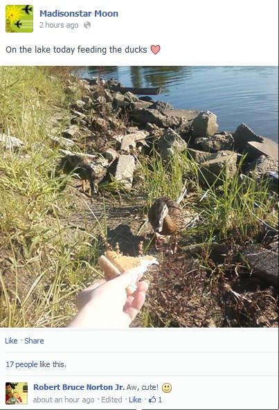 bad_duck.jpg