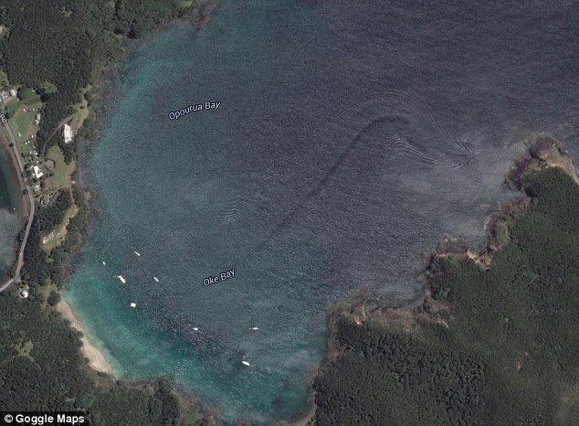 Debunked: Sea Creature in New Zealand (Boat Trail on Google Maps ...