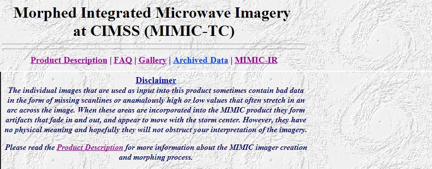 mimicdisclaimer.jpg