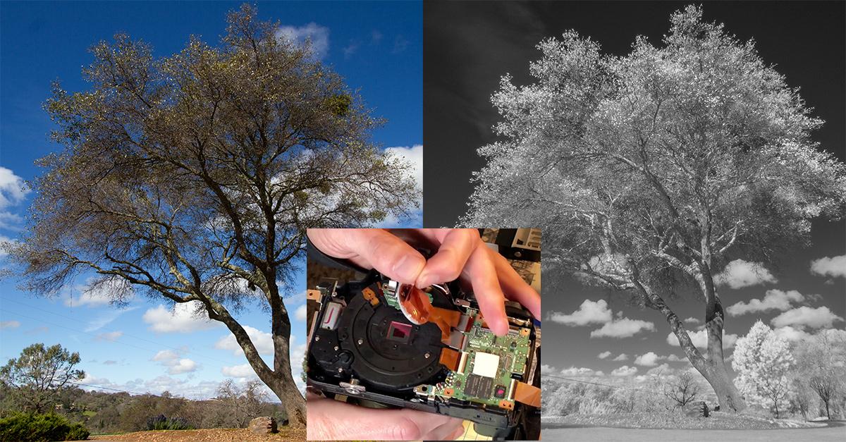 P900 Conversion.jpg