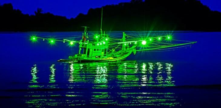 Squid-fishing-730x357.jpg
