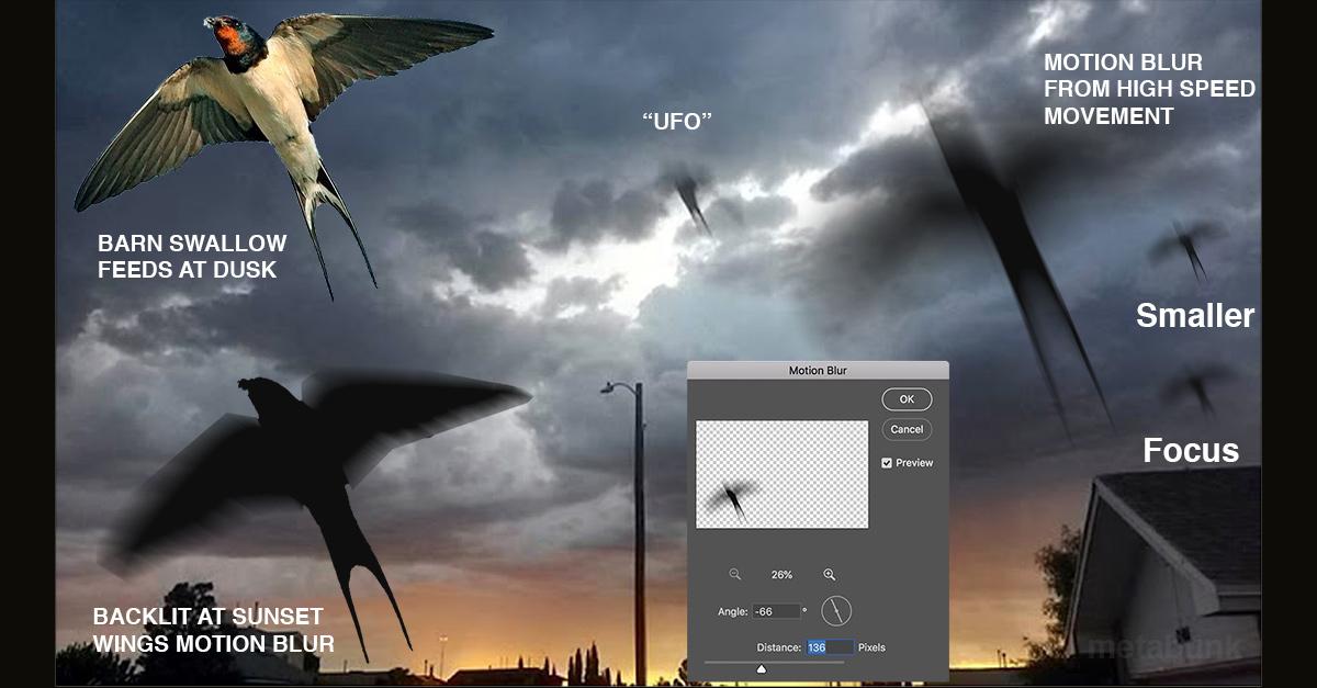 UFO Barn Swallow.