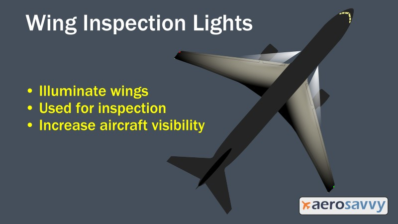 Wing_Inspection.jpg