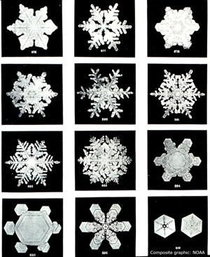 snowflake_c_NOAA_300.jpg