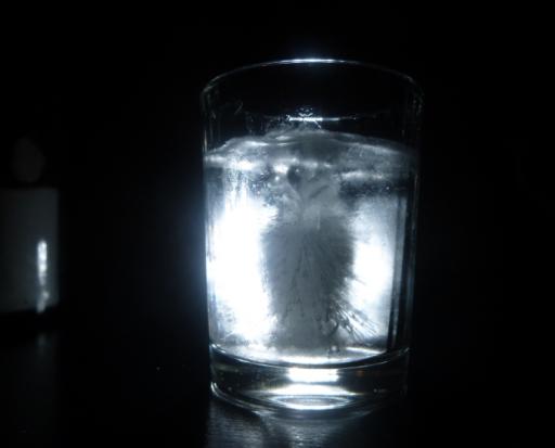owlshotglass.PNG